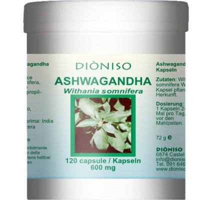ashwagandha dosierung
