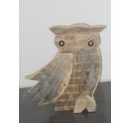 Barn Owl - XL