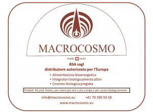 Macrocosmo